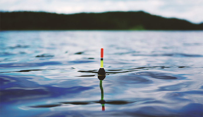 Fishing bobber in water